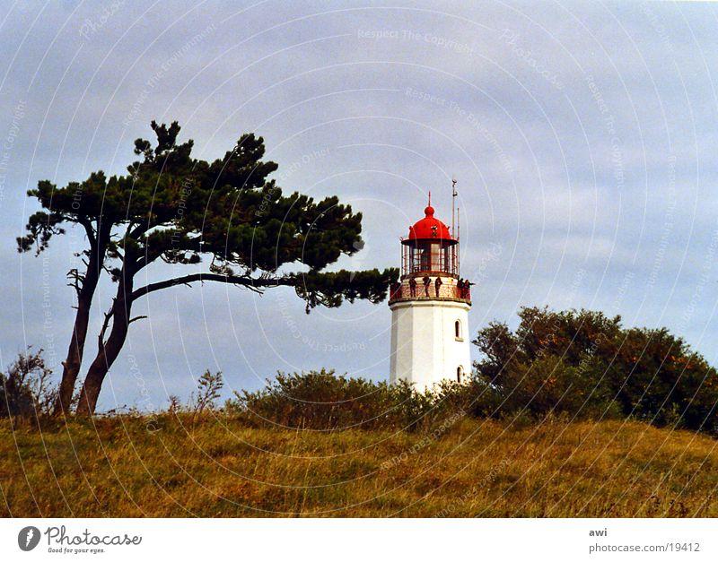 Dornbusch Hiddensee Leuchtturm Baum Gras Hügel grün rot See Schifffahrt Insel blau