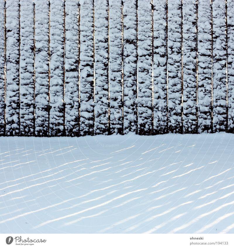 Am Tag danach Winter Klima Klimawandel Wetter Unwetter Sturm Eis Frost Schnee Garten Coolness kalt weiß Zaun Zaunpfahl Streifen Linie liniert Gedeckte Farben