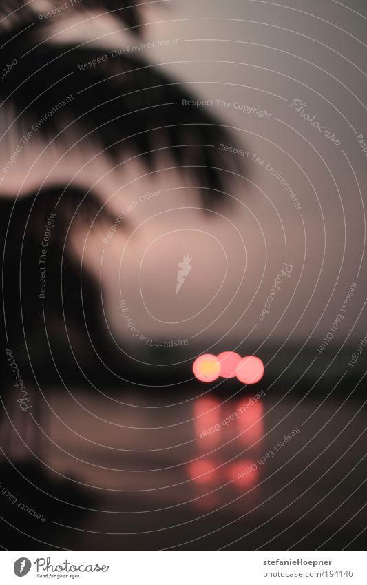 red rain Himmel Sommer Ferien & Urlaub & Reisen Ferne Straße PKW Regen Wetter Klima fahren Romantik Sehnsucht Unwetter Autofahren Fernweh exotisch