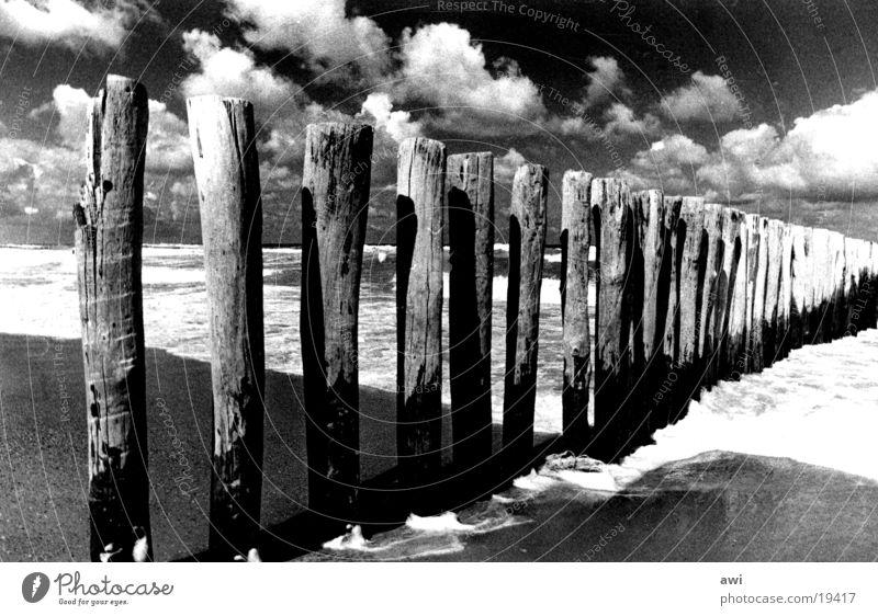 Wolken und Meer Strand Holz Niederlande Gischt See Buhne Himmel Kontrast Schwarzweißfoto Pfosten
