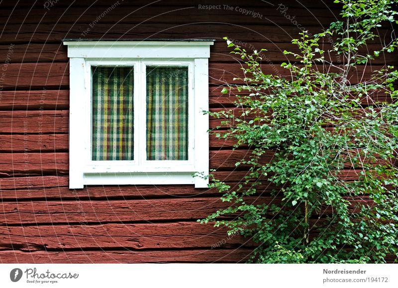 Mehr braucht es nicht Baum Ferien & Urlaub & Reisen Ferne Erholung Freiheit Holz Glück Architektur Zufriedenheit wandern Design Tourismus Lifestyle natürlich