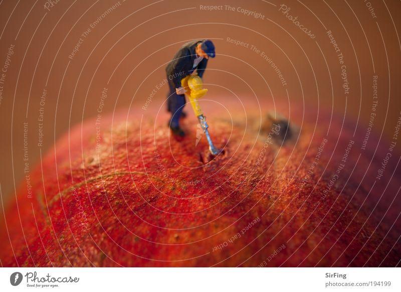 Under Construction Mensch rot Arbeit & Erwerbstätigkeit klein Lebensmittel Frucht Baustelle Beruf Apfel außergewöhnlich Maschine Werkzeug exotisch Technik & Technologie Arbeiter Bauarbeiter