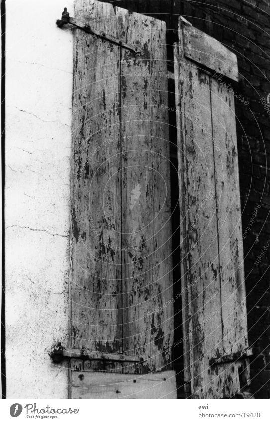 Fensterladen Holz geschlossen dunkel Haus Architektur Schwarzweißfoto Kontrast