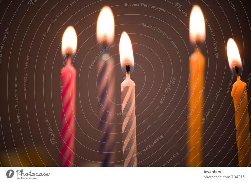 Geburtstag Feste & Feiern Dekoration & Verzierung Kerze genießen heiß hell mehrfarbig Freude Glück Fröhlichkeit Lebensfreude Überraschung Wunsch