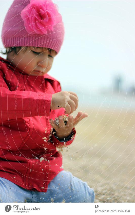Sandspiel 2 Mensch Kind Jugendliche Erholung Erwachsene Leben Familie & Verwandtschaft Spielen Freizeit & Hobby Zufriedenheit Kindheit Baby lernen beobachten