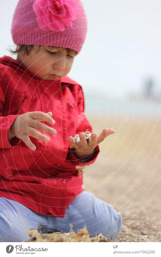 kleines Kind, das Sand beobachtet Mensch Ferien & Urlaub & Reisen Erwachsene Leben Senior Familie & Verwandtschaft Spielen Denken Freizeit & Hobby Kindheit Baby