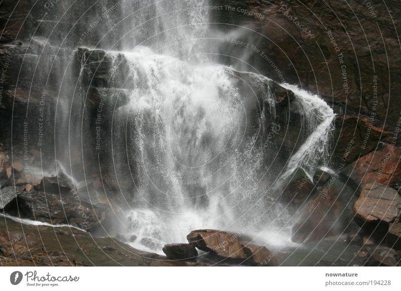 Ramboda Wasserfall Umwelt Natur Urelemente Urwald Felsen Stein authentisch wild Sri Lanka Hochebene Südasien Südostasien Asien Ramboda-falls Central Province