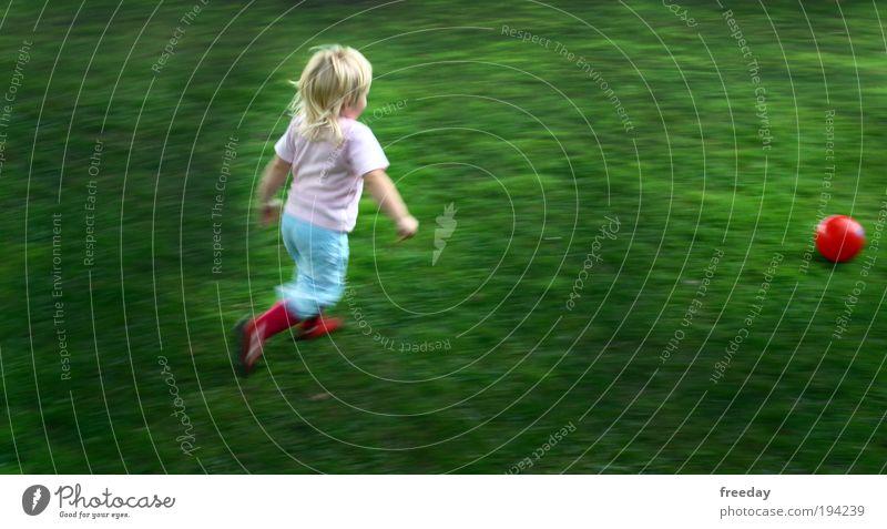::: Training für die WM 2026 ::: Spielen Freude Gras Wiese Fußballplatz Sport Kind Mädchen Ausdauer Kleinkind Schuss Ball Kindheit rennen laufen Lebensfreude