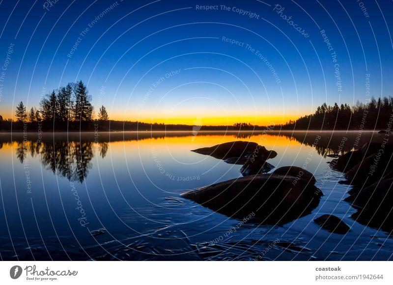 Morgenstimmung am Salajärvi Natur Landschaft Wasser Wolkenloser Himmel Sonnenaufgang Sonnenuntergang Herbst Schönes Wetter Eis Frost Baum Seeufer Finnland