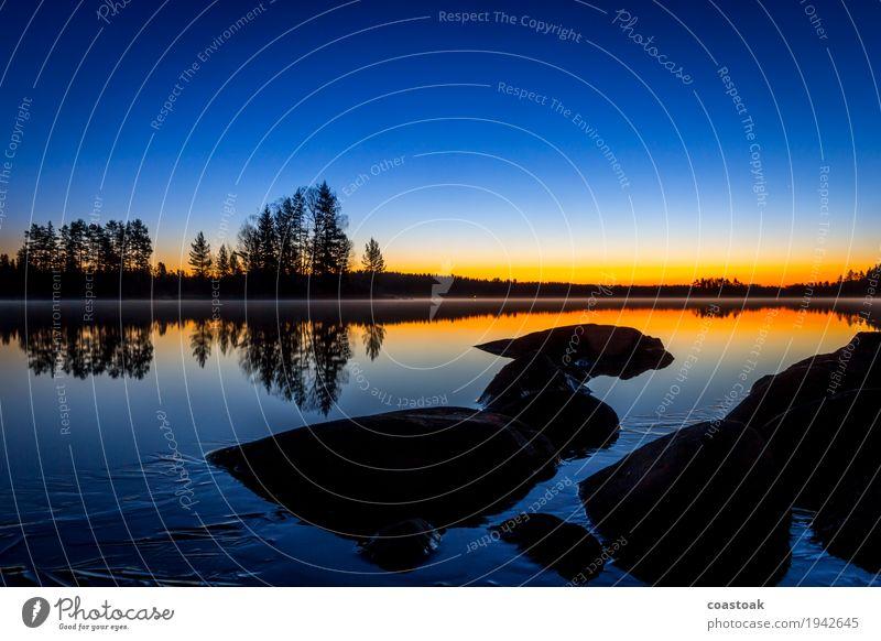 Blaue Stunde am Salajärvi Natur Landschaft Wasser Wolkenloser Himmel Sonnenaufgang Sonnenuntergang Herbst Schönes Wetter Seeufer Onkiniemi Finnland Menschenleer