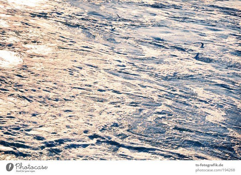 Wildwasser V blau Wasser weiß Meer Freude Wetter Wellen Hintergrundbild Wind Urelemente Unwetter Flüssigkeit Sturm silber fließen schlechtes Wetter