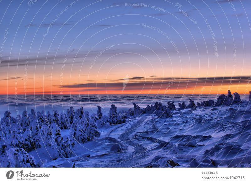 Morgenaussicht vom Brocken Natur Landschaft Himmel Wolken Sonnenaufgang Sonnenuntergang Winter Eis Frost Berge u. Gebirge Gipfel Wege & Pfade frisch kalt blau