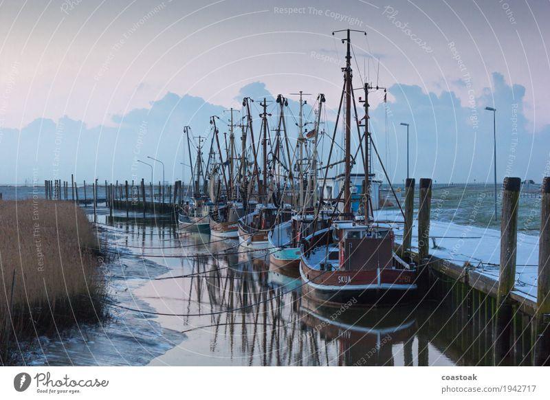Krabbenkutter in Dorum Fischer Fischereiwirtschaft Wasser Küste Meer Schifffahrt Fischerboot liegen fest blau Sicherheit Geborgenheit Ebbe Seil Anlegestelle