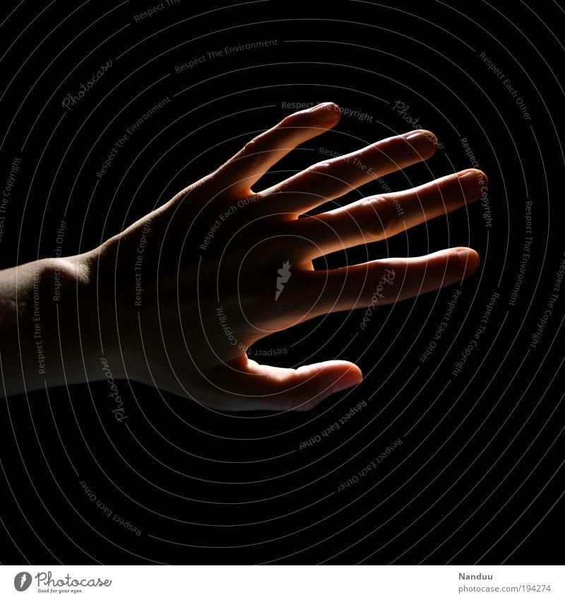 Gegenlicht streicheln Hand 1 Mensch berühren dunkel Gefühle Orientierung blind Sinnesorgane Tastsinn Finger Hoffnung sensibel Streicheln zart Farbfoto
