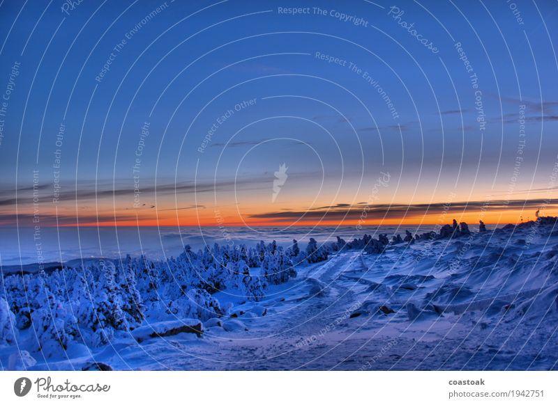 Weg auf den Brocken Natur Landschaft Himmel Wolken Sonnenaufgang Sonnenuntergang Winter Eis Frost Berge u. Gebirge Schneebedeckte Gipfel Wernigerode frisch kalt