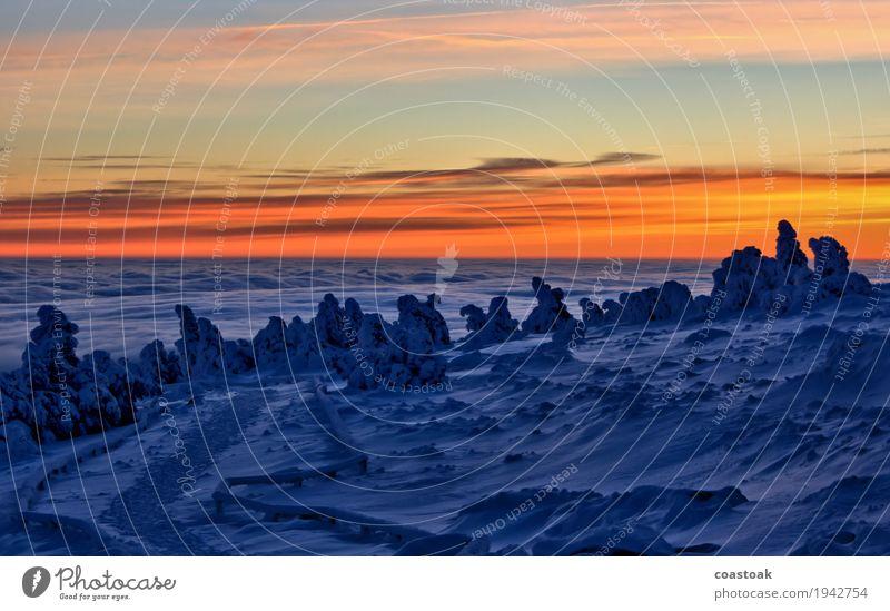 Sonnenaufgang am Brocken Natur Landschaft Himmel Wolken Sonnenuntergang Winter Eis Frost Berge u. Gebirge Schneebedeckte Gipfel frisch kalt blau orange