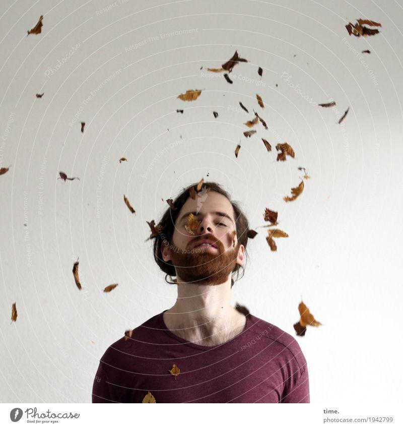 . maskulin Mann Erwachsene 1 Mensch Kunstwerk Skulptur Tanzen Blatt Herbstlaub T-Shirt langhaarig Vollbart fallen fliegen genießen schön Zufriedenheit