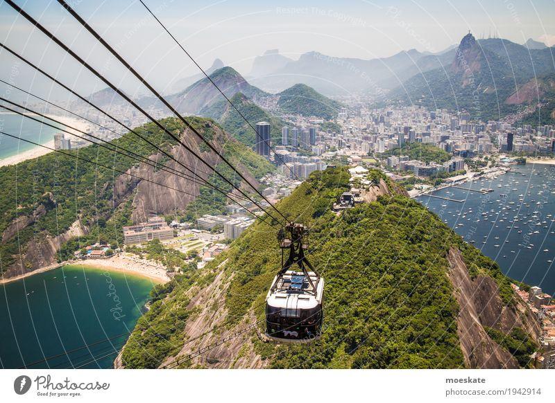 Blick vom Zuckerhut, Rio de Janeiro Landschaft Wasser Himmel Wolkenloser Himmel Sommer Urwald Hügel Felsen Berge u. Gebirge Gipfel Küste Strand Bucht Meer Stadt