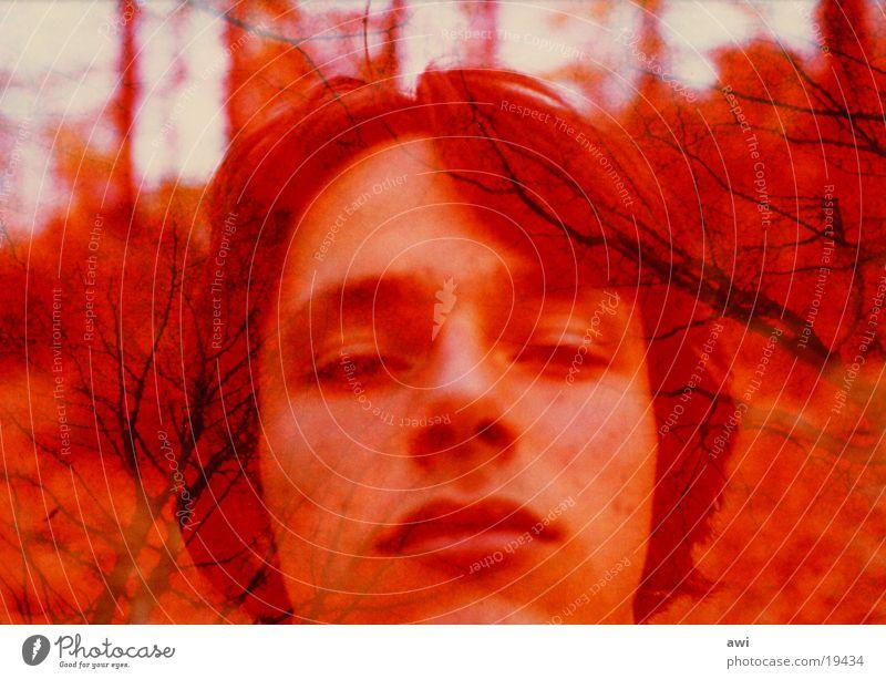Rotsehen Mann rot Baum Porträt Mensch