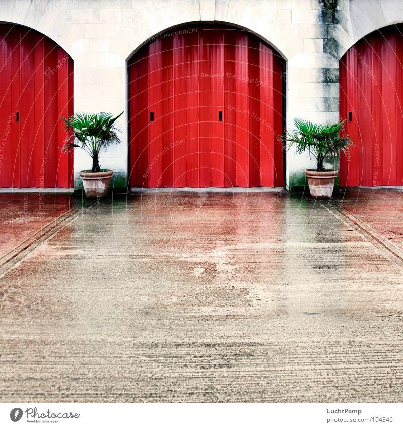 Geh' aufs Ganze Berge u. Gebirge Symmetrie Tor Pflanze Blumentopf Palme Garagentor rot Blech Beton Wand Einfahrt ruhig Feuerwehr dreckig weiß rot-weiß