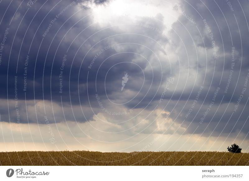 Sturm Wolken Freiheit Hintergrundbild Frieden Gewitter Umweltschutz pflanzlich Kumulus Freiraum