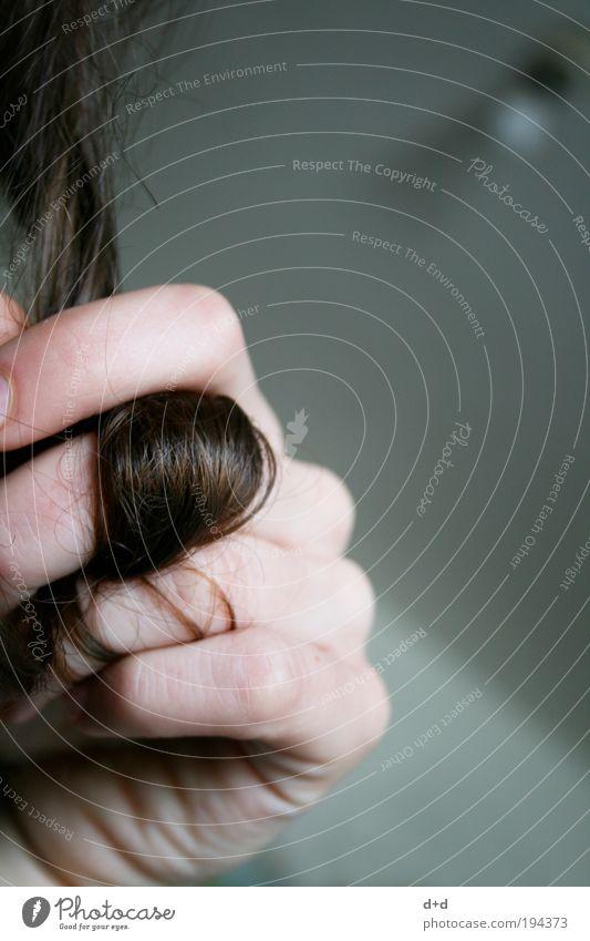 B Frau Hand Haare & Frisuren braun Haut ästhetisch Finger zart Locken brünett Langeweile langhaarig typisch Haarsträhne mädchenhaft dunkelhaarig