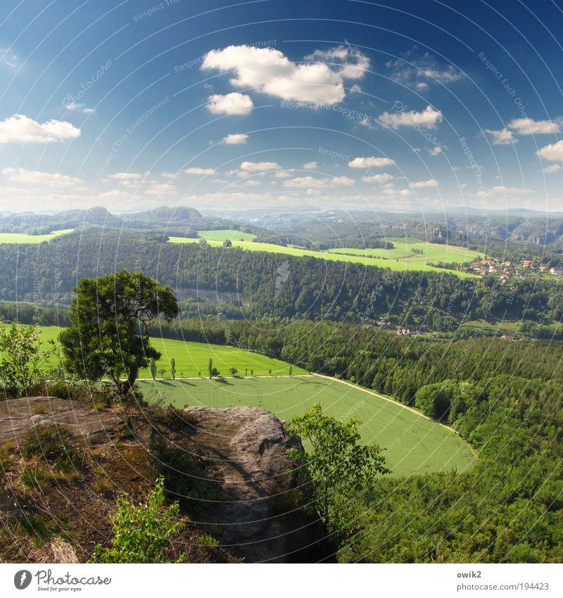 Motivationstraining Ausflug Ferne Freiheit Umwelt Natur Landschaft Pflanze Erde Luft Himmel Wolken Horizont Klima Wetter Schönes Wetter Baum Gras Sträucher