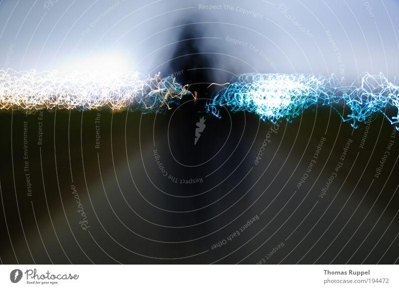 Unterwegs ins Licht Lichterscheinung Lichtspiel Mensch 2 Umwelt Natur Himmel Wolkenloser Himmel Nachthimmel Gras Wiese Feld Stadtrand Verkehrswege Fußgänger