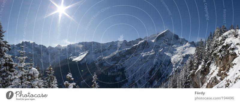 Winterpanorama Garmisch Natur Landschaft Himmel Wolkenloser Himmel Sonne Sonnenlicht Schönes Wetter Schnee Baum Wald Alpen Berge u. Gebirge Alpspitze Zugspitze
