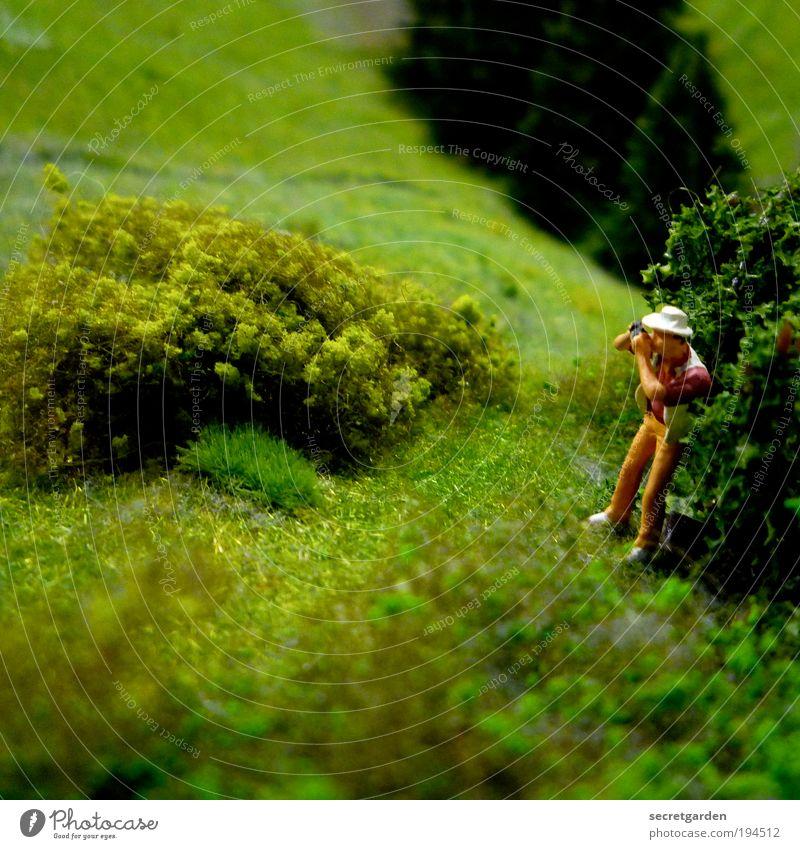 Achtung Spanner! Mensch Mann Natur grün Ferien & Urlaub & Reisen Wiese Gras Berge u. Gebirge Landschaft Erwachsene klein Tourismus Sträucher Freizeit & Hobby Fotokamera beobachten