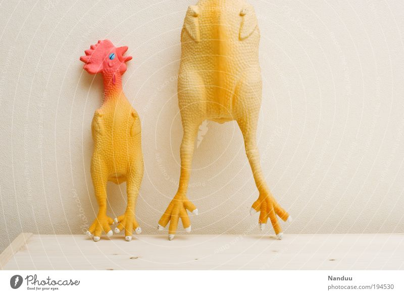 Mamiiiiiii?!?!?!!!! Tier Tod verrückt kaputt Trauer Spielzeug skurril seltsam Haushuhn Gummi Nutztier absurd Hahn Pastellton Witz Vogel