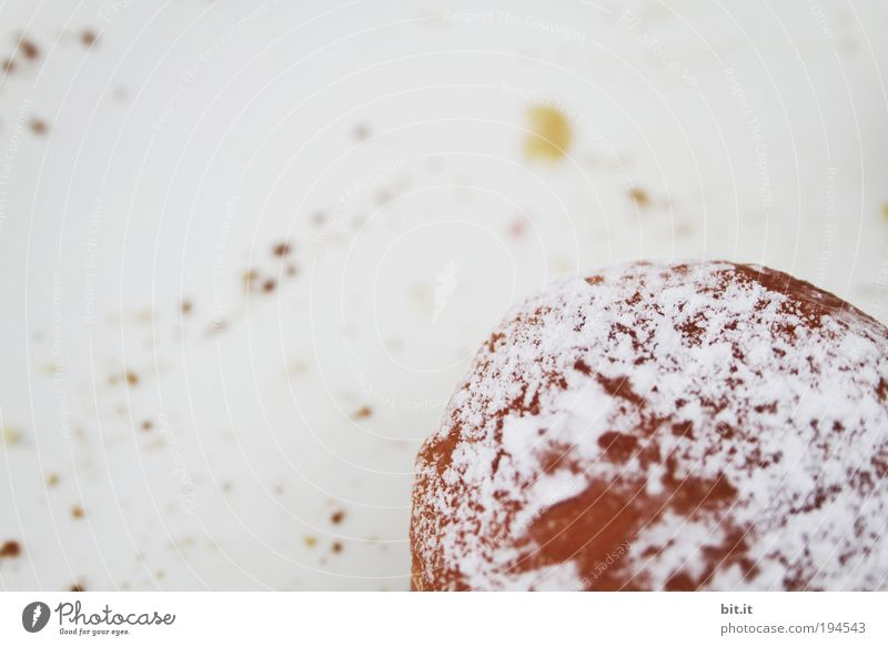 BERLINER, KRAPFEN ODER PFANNKUCHEN? Ernährung Lebensmittel Süßwaren Fett Backwaren Dessert Teigwaren Krapfen Kalorie Kaffeepause Detailaufnahme Perspektive Textfreiraum links Vogelperspektive Kaffeetrinken Pfannkuchen