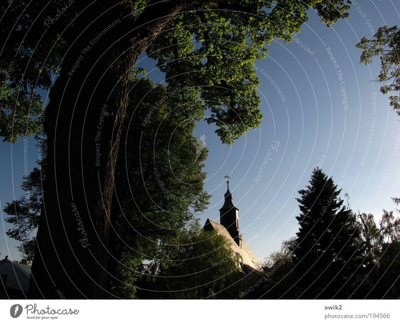 Leuchtturm Wolkenloser Himmel Sommer Klima Wetter Schönes Wetter Baum Liebenau Sachsen Deutschland Europa Kirche Turm Bauwerk Gebäude Architektur heilig