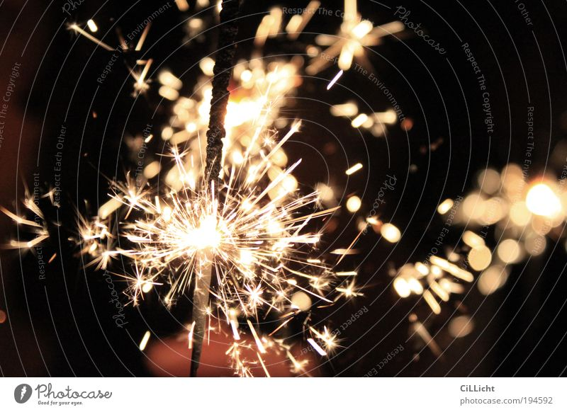 Feuer und Flamme schwarz Feste & Feiern gold leuchten Urelemente Kerze Silvester u. Neujahr Feuerwerk brennen Jubiläum Funken Technik & Technologie Wunderkerze