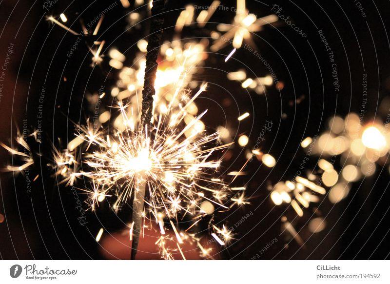 Feuer und Flamme schwarz Feste & Feiern gold leuchten Feuer Urelemente Kerze Silvester u. Neujahr Feuerwerk brennen Jubiläum Funken Technik & Technologie Wunderkerze sprühen Pyrotechnik