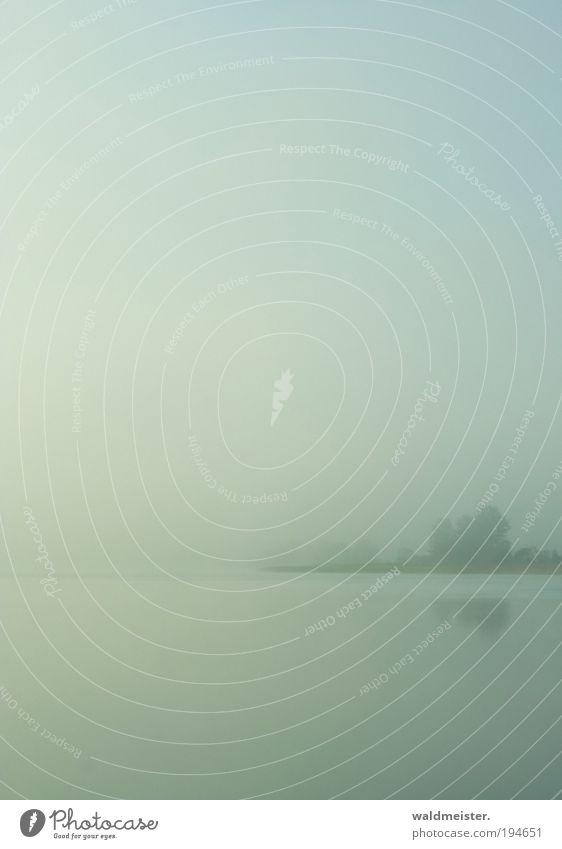 Herbstmorgen Landschaft Wasser Nebel Baum Seeufer Erholung ruhig Ferien & Urlaub & Reisen herbstlich Farbfoto Außenaufnahme Morgen
