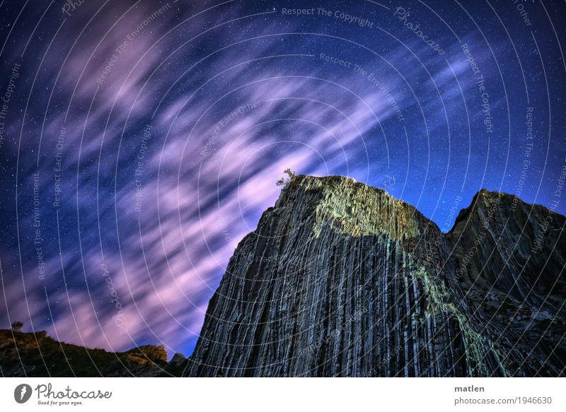 in der ersten Reihe Natur Landschaft Himmel Wolken Schönes Wetter Baum Felsen Berge u. Gebirge blau grau grün rosa weiß Flysch ziehen Farbfoto Außenaufnahme