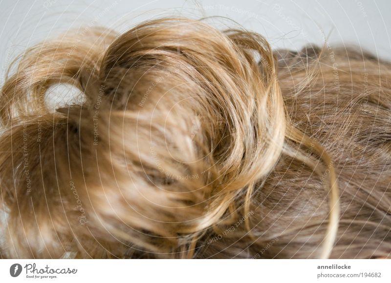 hochgesteckt Mensch schön Erwachsene feminin Leben Haare & Frisuren Kopf blond elegant natürlich Behaarung Locken Friseur langhaarig ausgehen Dutt