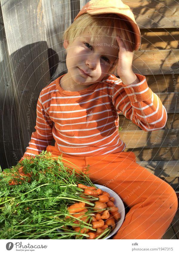Ernte - klein aber fein! Herbst Schönes Wetter Möhre Garten authentisch frisch lecker orange Kindheit Farbfoto Außenaufnahme Tag Licht Schatten Porträt Blick