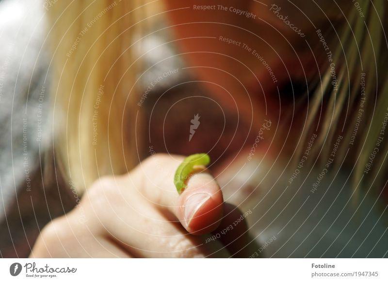 Die Wunder der Natur bestaunen Mensch feminin Kind Mädchen Kindheit Haut Kopf Haare & Frisuren Gesicht Nase Mund Lippen Hand Finger 1 Umwelt Tier Wurm klein nah