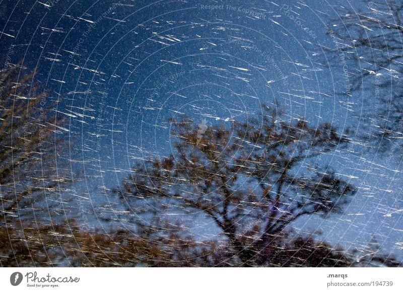 Meteoritenschauer Natur Himmel Baum Pflanze dunkel Gefühle träumen Regen Landschaft Metall dreckig Stern Wetter Umwelt Sträucher Wandel & Veränderung