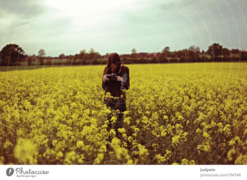 Die Fotografin Mensch Himmel Natur Jugendliche Pflanze Sonne Sommer ruhig Erwachsene gelb Umwelt Landschaft Frühling träumen Stimmung Zufriedenheit
