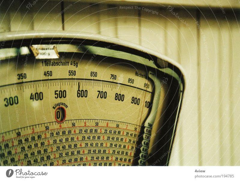 Saisonangst alt schön Lebensmittel Ernährung ästhetisch Ziffern & Zahlen genießen Übergewicht dünn Gelassenheit Mut dick Wohlgefühl Reichtum Überraschung