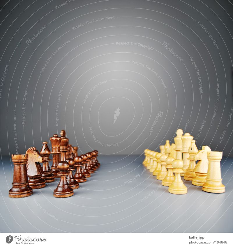 pattsituation Spielen Freizeit & Hobby Tisch planen Lifestyle Dame Krieg kämpfen Sportveranstaltung Politik & Staat klug Schach Krise Plan verlieren Mensch