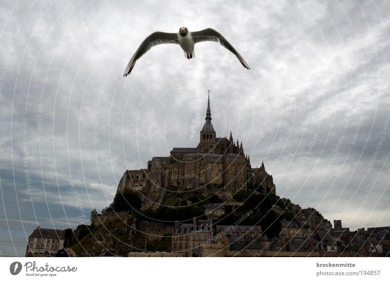 Vogelperspektive Himmel Wolken Architektur Luft Gebäude Stimmung Vogel fliegen bedrohlich Flügel geheimnisvoll fantastisch historisch Unwetter Wahrzeichen Frankreich