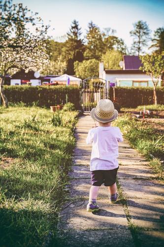 mal gucken gehen #2 Mensch Pflanze Sommer Sonne Baum Bewegung Gesundheit Junge Spielen Glück Garten maskulin Körper Kindheit Schuhe Sträucher