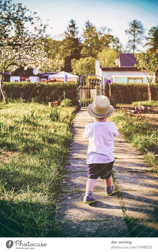 mal gucken gehen #2 Spielen Abenteuer Sommer Sonne Garten maskulin Junge Kindheit Körper 1 Mensch 1-3 Jahre Kleinkind Schönes Wetter Pflanze Baum Sträucher