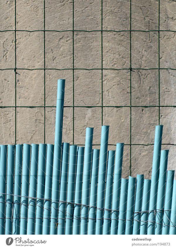 annäherungshindernisse Mauer Wand Zaun Sicherheit Schutz Einsamkeit Sperrzone Grenze Grenzgebiet Gartenzaun suspekt gefangen Käfig distanzieren Farbfoto