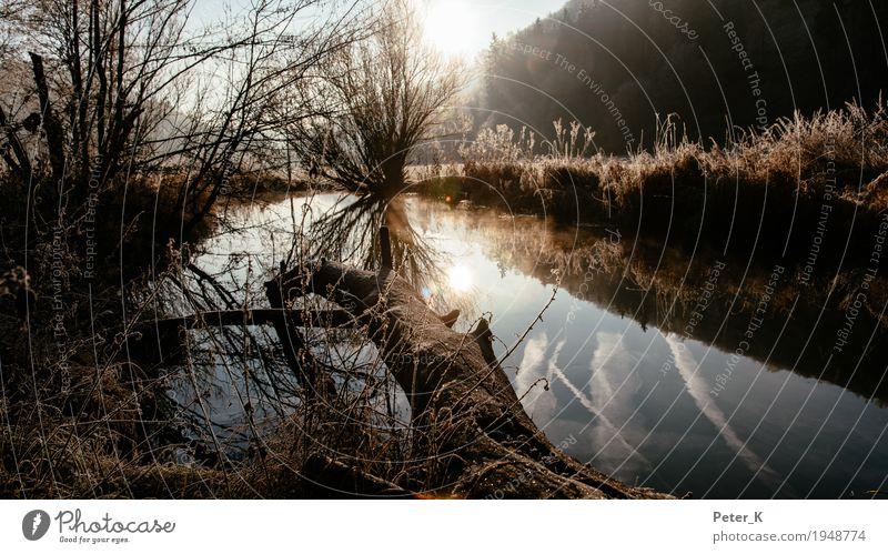 Sonnenaufgang im Lautertal Tourismus Ausflug Umwelt Natur Landschaft Pflanze Wasser Sonnenuntergang Herbst Schönes Wetter Baum Gras Sträucher Feld Bach