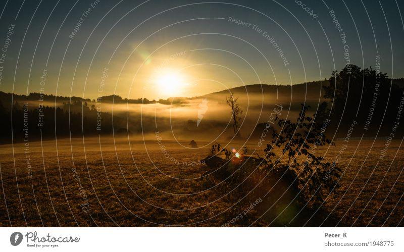 Sonnenaufgang auf der Schwäbischen Alb Reiten Ferien & Urlaub & Reisen Tourismus Ausflug wandern Umwelt Natur Landschaft Pflanze Himmel Wolkenloser Himmel